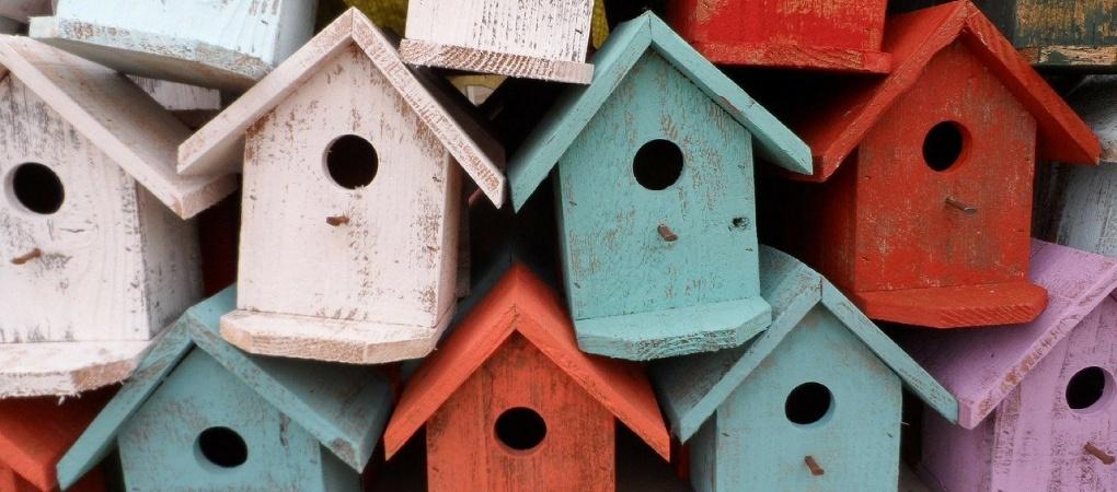 vogelhuisje maken van hout in in verschillende kleuren
